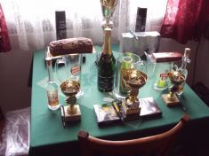 Šipkový turnaj 2016
